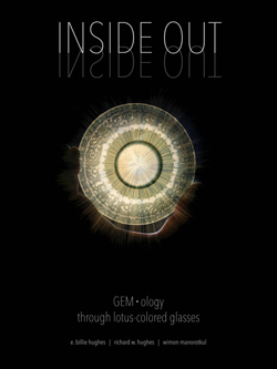 Inside Out | GEM•ology Through Lotus-Colored Glasses (2020)