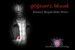 Pigeon's Blood: A Journey to Burma's Ruby Mines