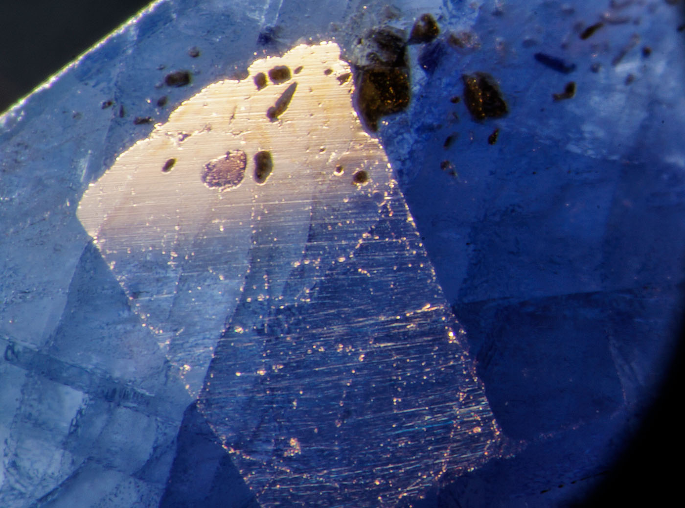 An inclusion in cobalt-doped glass filled sapphire reveals the lower luster of the glass filler. Photo: Richard W. Hughes, Lotus Gemology.