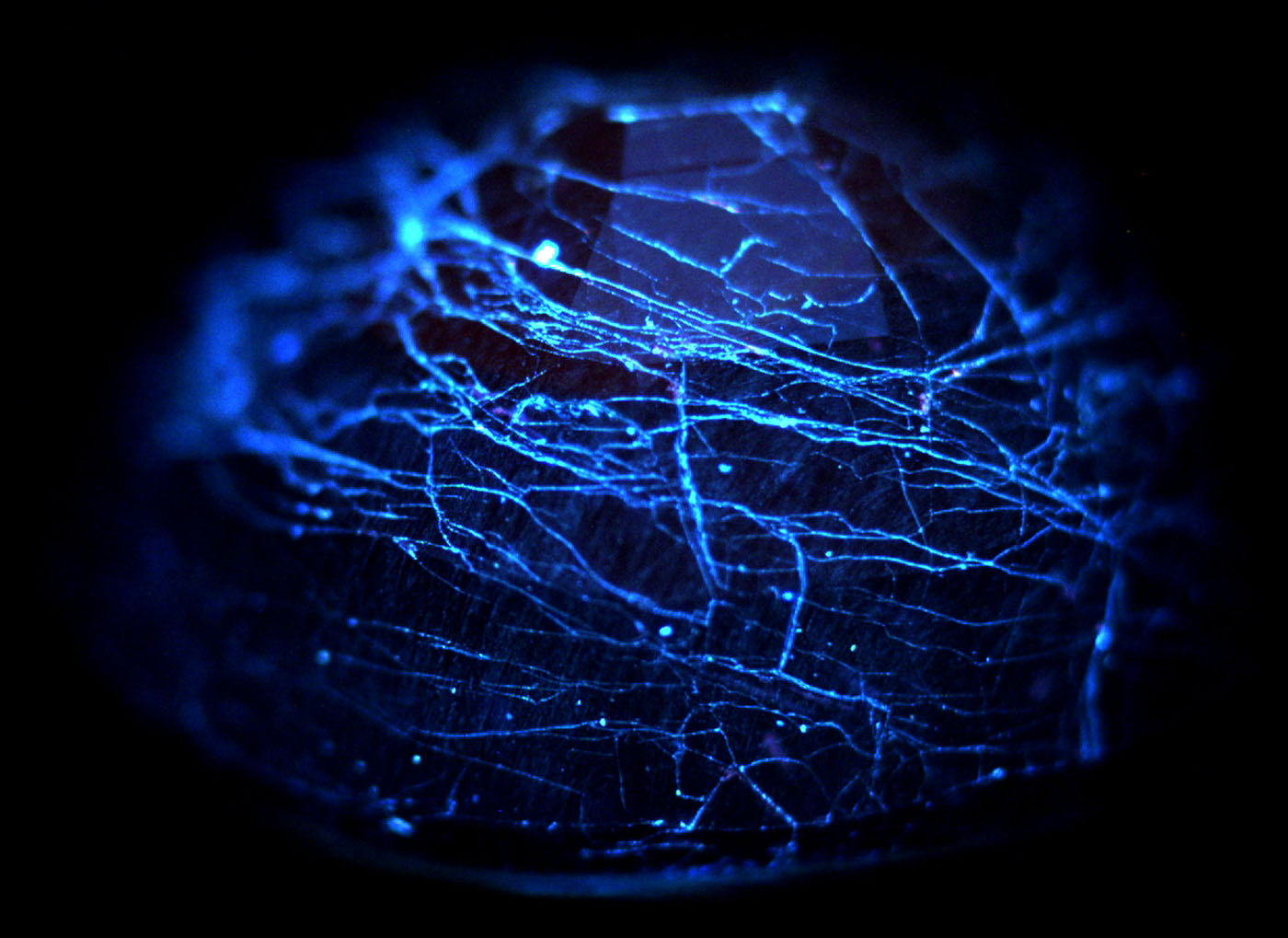 Figure 13. DiamondView™ image of a cobalt-doped glass-filled sapphire, showing chalky blue fluorescence from the glass-filled fissures. (Image: GIT).