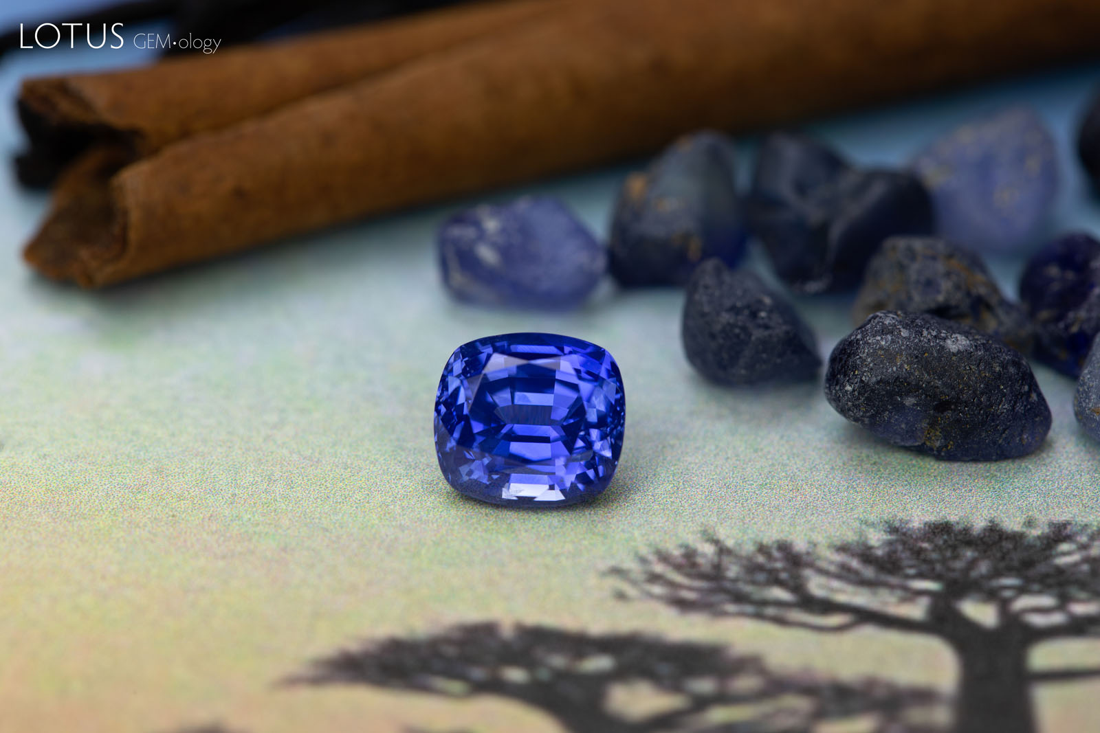 Sapphires from Madagascar: a beautiful 3.29 ct untreated faceted stone and an assortment of rough in the background. Madagascar has produced many high-quality stones in the last few years and is quickly gaining a reputation for fine sapphires equal to any on the planet. Photo by Wimon Manototkul, sapphire courtesy of Neil Doohan.