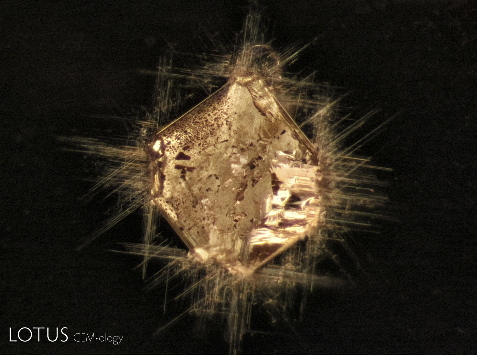 Xenomorphic carbonate (probably dolomite) filling an octahedral negative crystal with oriented needles at the corners. The needles might be either mineral matter or acicular voids. Spinel host from Burma (Myanmar). 200X.
