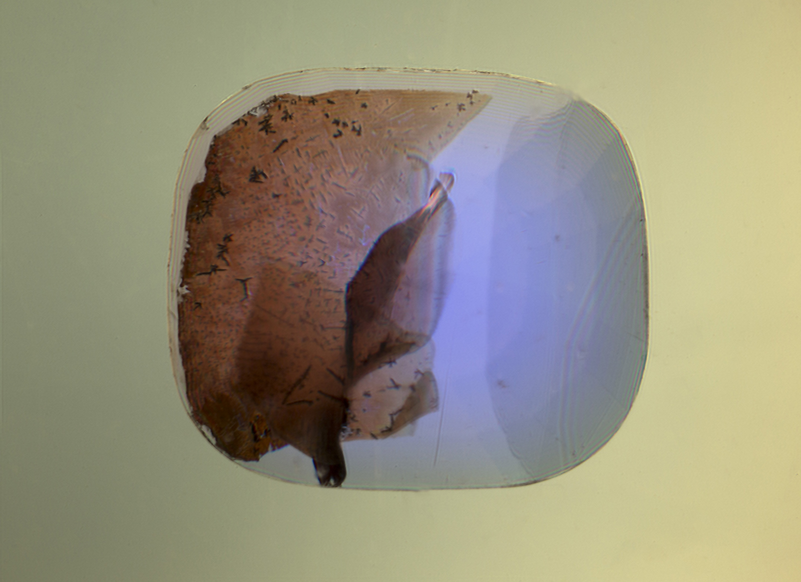 When immersed in di-iodomethane (methylene iodide), the extent of the fissure becomes readily apparent. Adding polarized light reveals Plato-Sandmeier twinning. A dislocation needle can also be seen at the lower center of the stone.