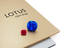 Lotus Gemology report lookup guide