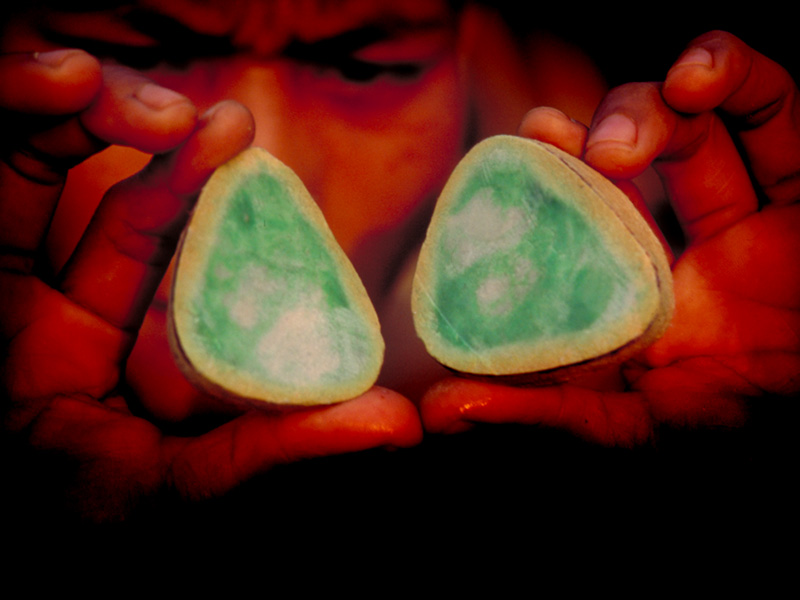 Sectioned jadeite boulder on offer in the jade market at Hpakan