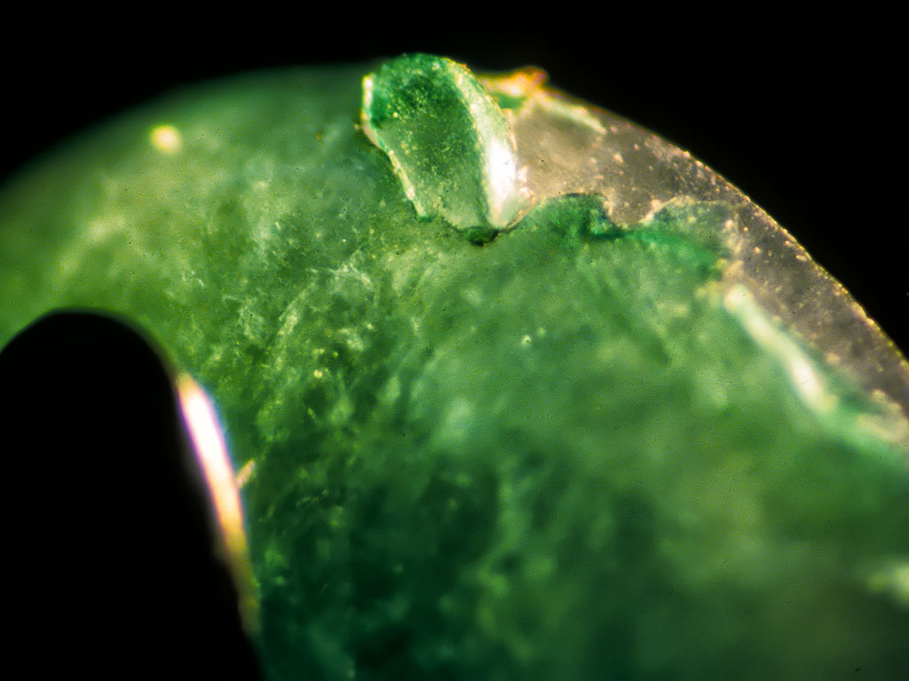 Bottom: A plastic-coated jadeite cabochon displays peeling of the green plastic at the girdle under magnification. Photos © Richard W. Hughes