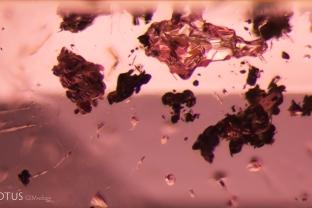 Several irregular dark crystals were present in this pink spinel.