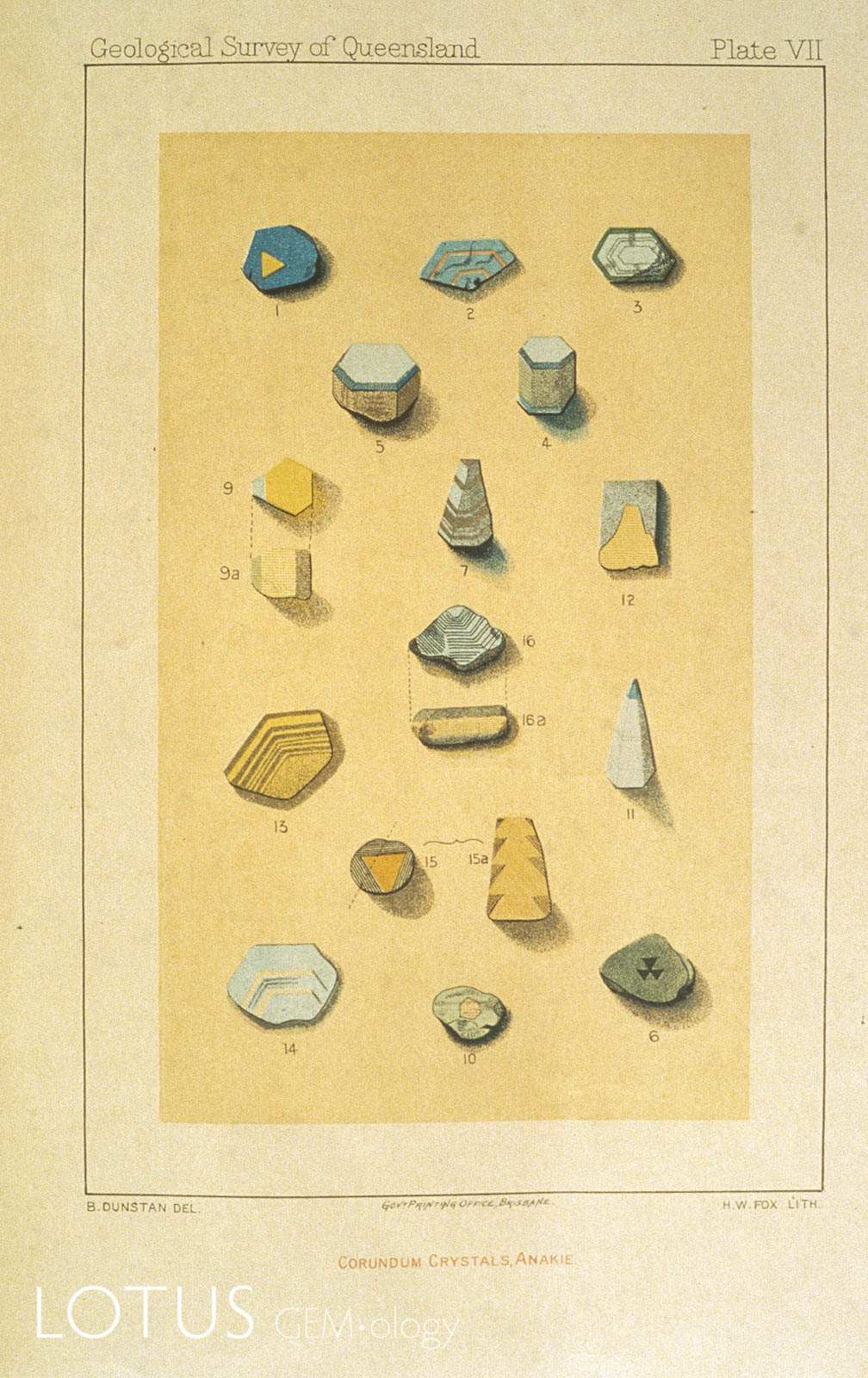 This colored plate from Dunstan's 1902 publication on Anakie (Queensland) sapphires shows various types of sapphire crystals.