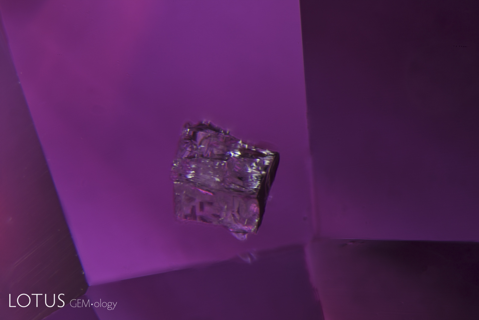 Blocky crystal of what is probably zircon in an unheated pink sapphire from Ilakaka, Madagascar. Photo: Richard W. Hughes
