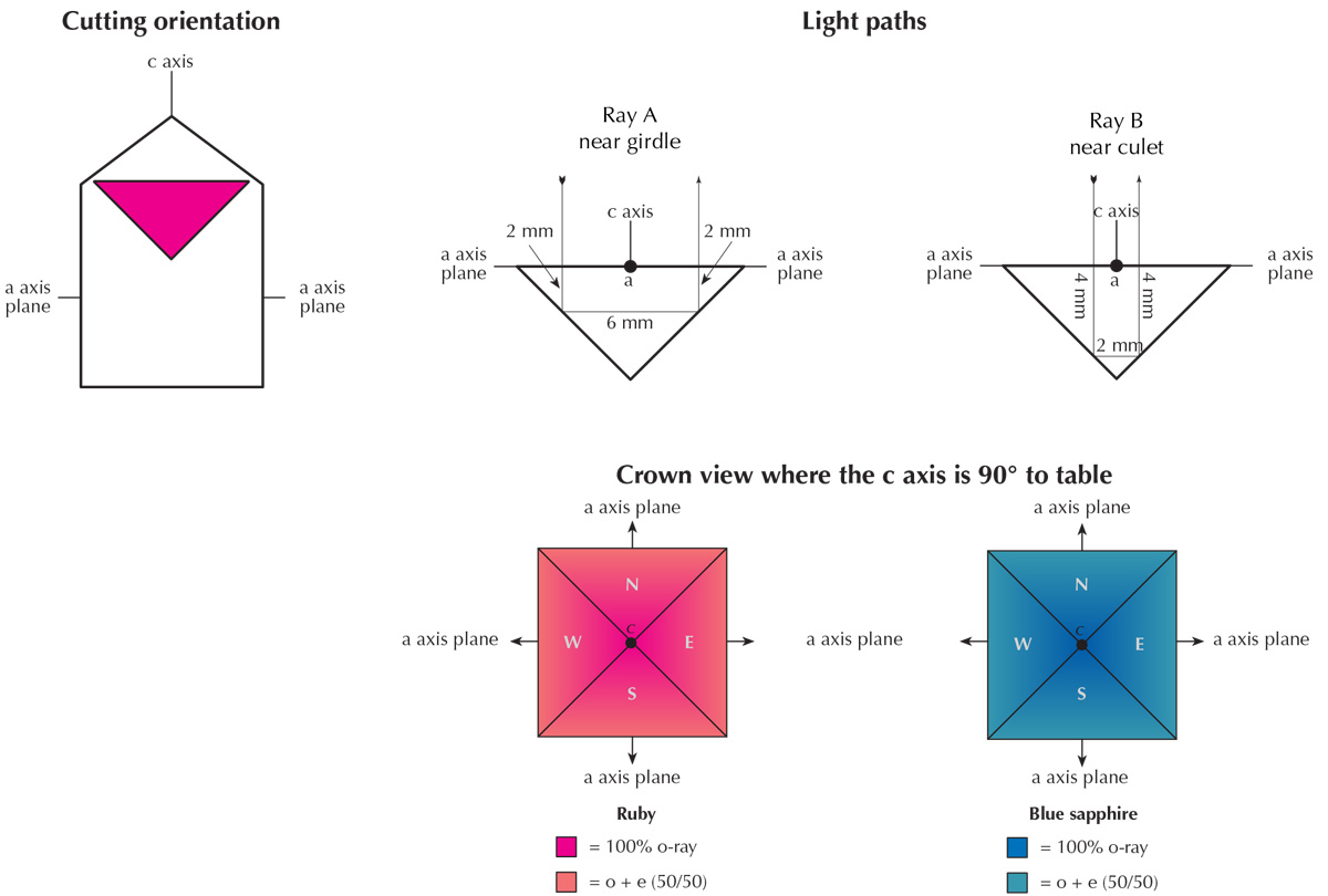 Figure 5. Pleochroism as seen through the crown in ruby and sapphire cut with the table at 90° to the c axis. Note that color variations in figures 5, 6, 8 and 12 are approximate only and designed to show general concepts. Refractive indices and pleochroism vary in logarithmic fashion, while the illustrations were generated showing linear variations. See Hurlbut (1984) for more details. Illustration: Richard W. Hughes