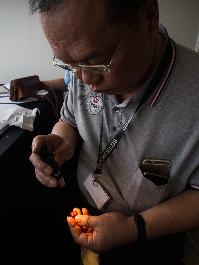 Por Kuang Tang examines the Rhino ruby at Gemfields' December 2014 auction in Singapore. Photo: E. Billie Hughes/Lotus Gemology