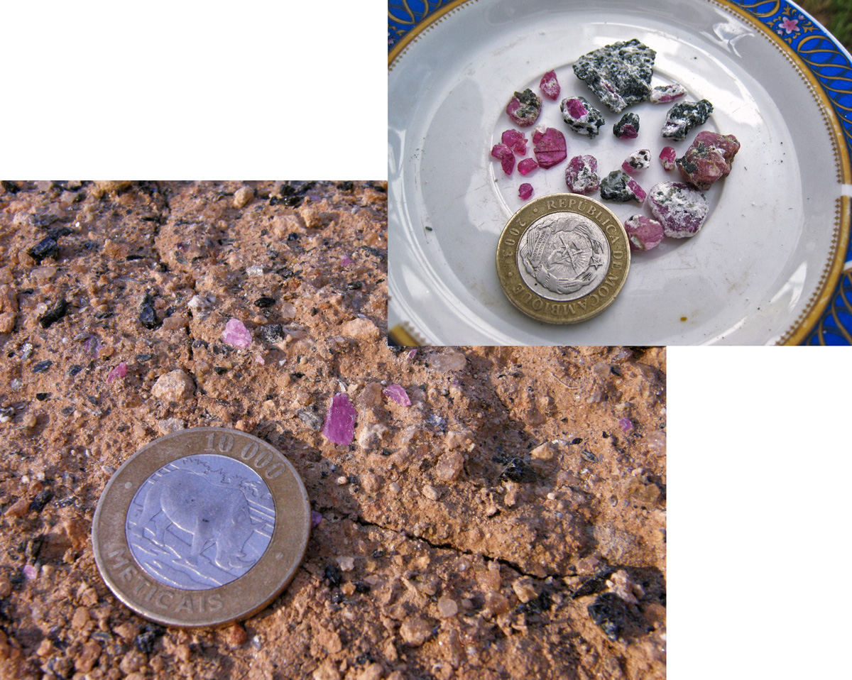 Upon our arrival at the site, we were able to collect a significant number of samples in just minutes, moreso than at any other ruby mine I had ever visited. Photo: Mark Smith; inset photo: Richard Hughes/Lotus Gemology.